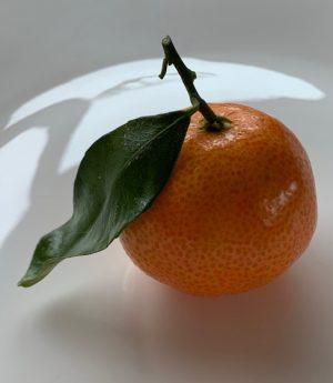 Mandarine on Ice